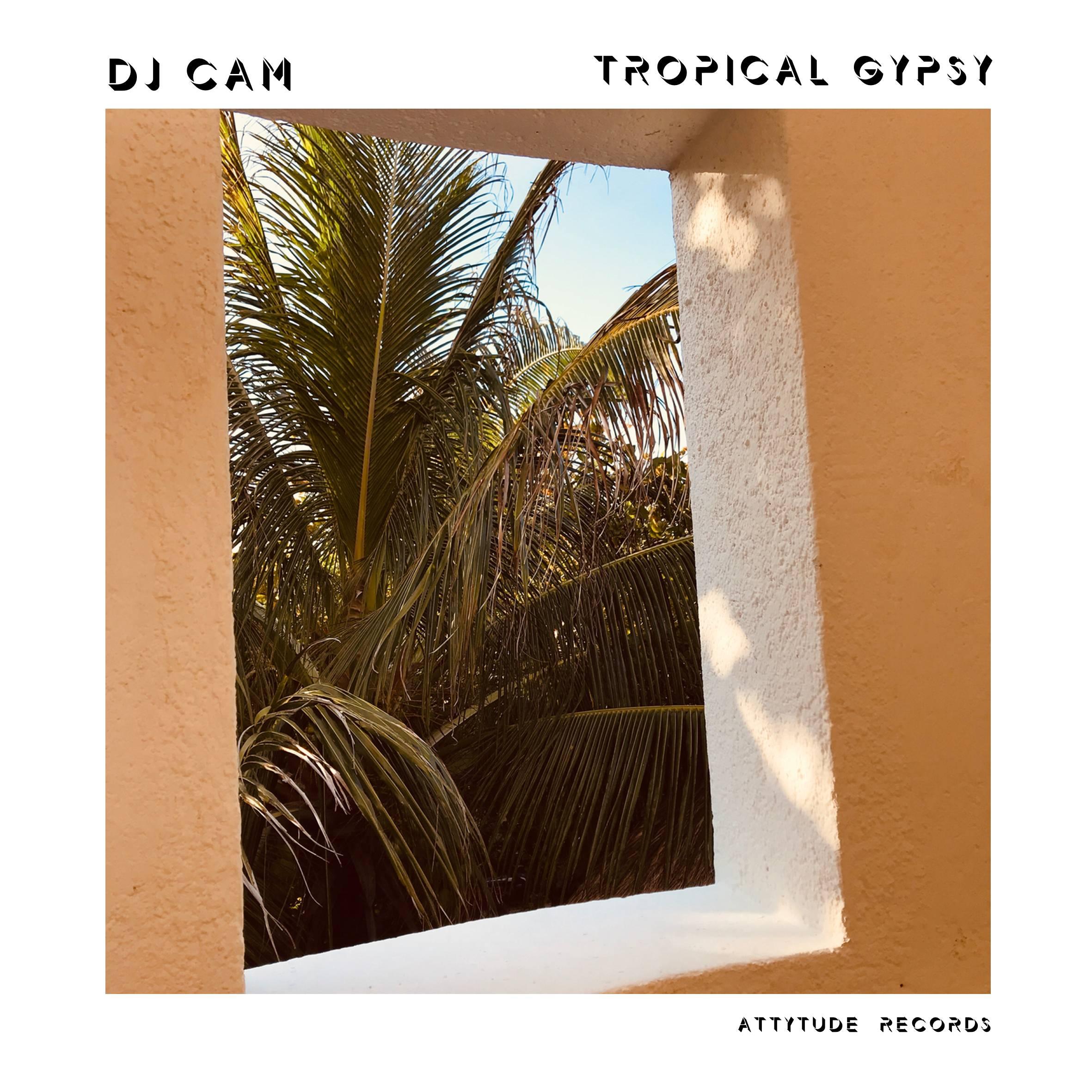 DJ Cam Tropical Gipsy